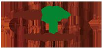 宝塚市すみれガ丘のハワイアンカフェ&ダイナー Cocotierのロゴ